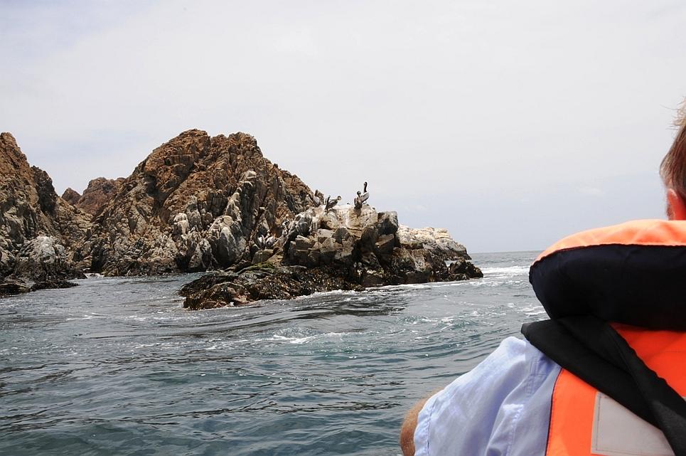 Bootsausflug im Pan de Azúcar Nationalpark während unserer Chile Reise