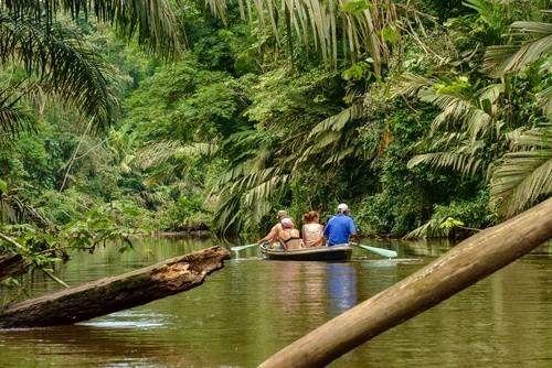 Bootstour im Tortuguero Nationalpark in Costa Rica auf unserer Mittelamerika Reise