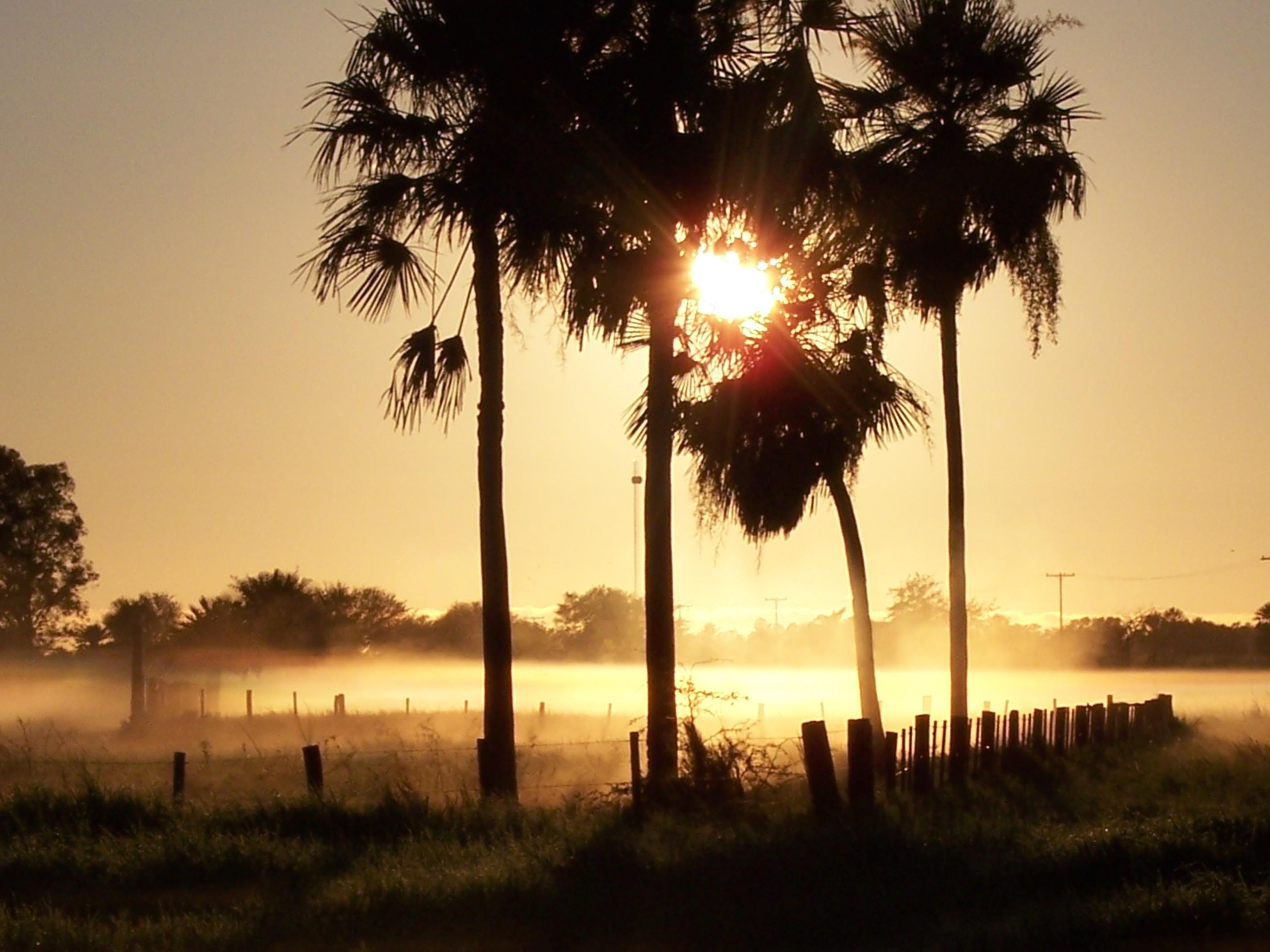 Sonnenaufgang im paraguayischen Chaco