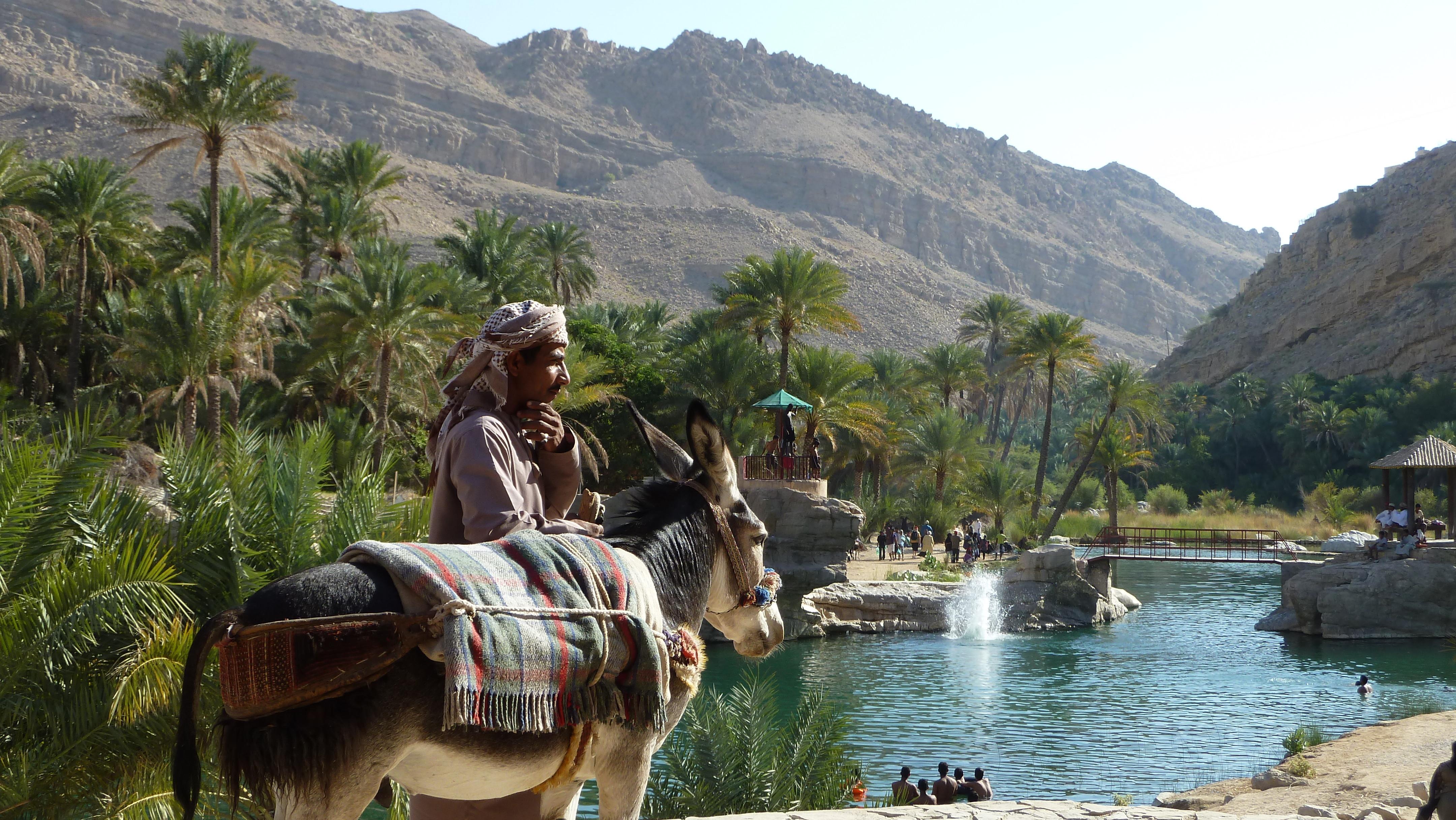 Oase inmitten der Wüste - das Wadi Bani Khalid