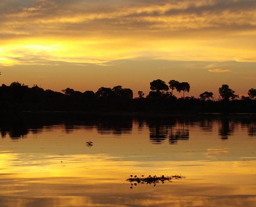 Abendstimmung im Amazonas auf unserer Brasilien Reise