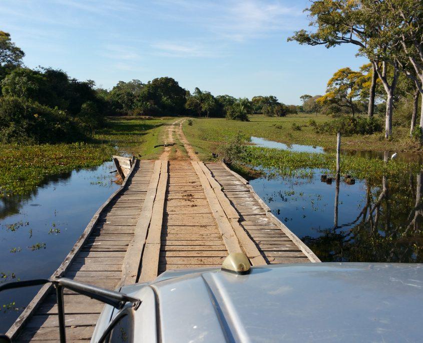 Unterwegs auf Tierbeobachtung im Pantanál auf unserer Brasilien Reise