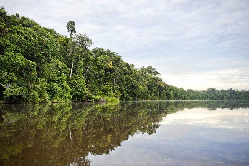 Morgenstimmung im Amazonastiefland von Peru