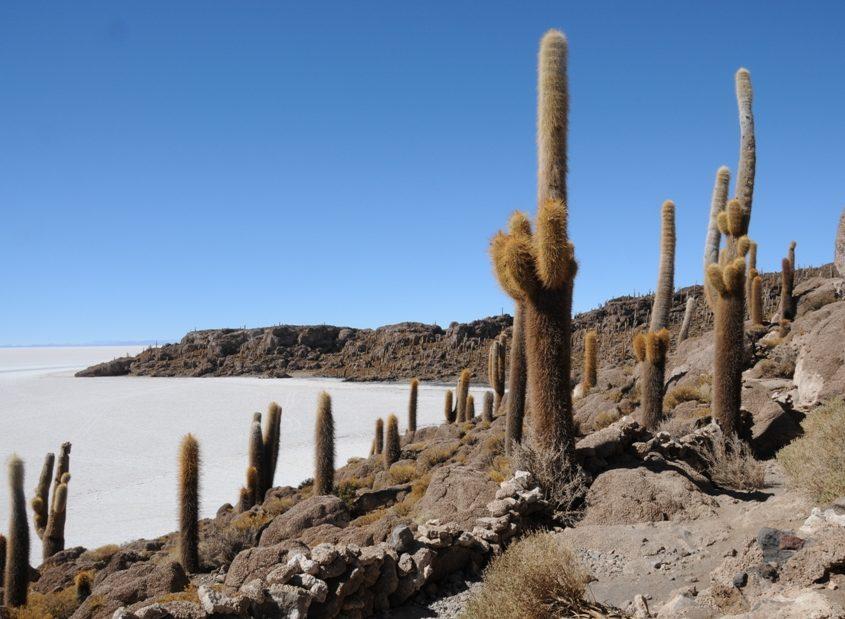 Wir entdecken den Salar de Uyuni auf unserer Südamerika-Rundreise