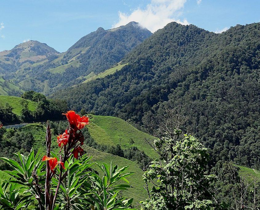 Herrliche Natur in Kolumbien