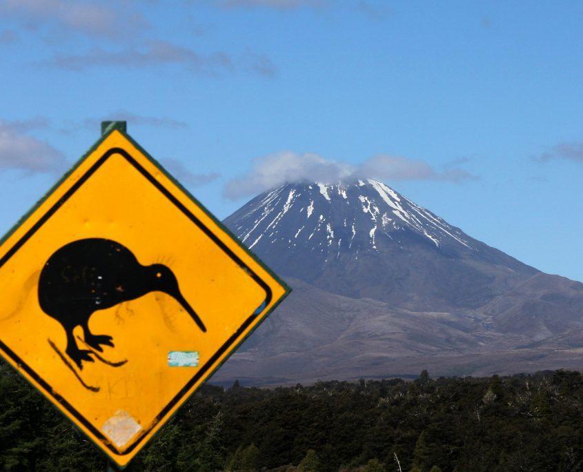 Kiwi und Vulkane - Wahrzeichen Neuseelands