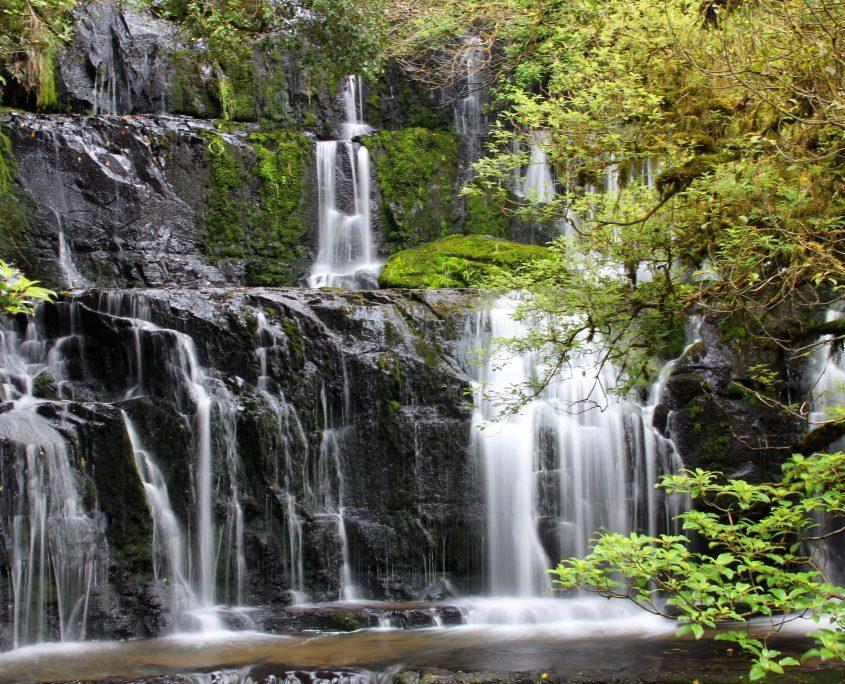Schöner Wasserfall auf dem Weg zum Milford Sound